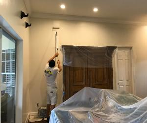 painting contractor Tampa before and after photo 1560369193930_SS13