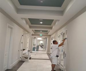 painting contractor Tampa before and after photo 1566307830454_SS16
